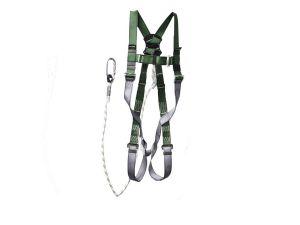 FP-P10-LB100-011_0