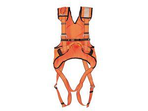 FP-P30HV_0